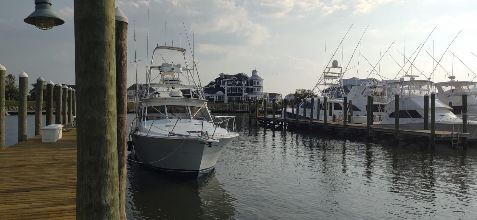 new-sail-boat-001